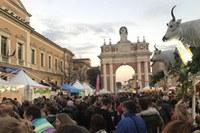 Dall'11 al 14 novembre torna la Fiera di San Martino: confermati tutti i settori, dall'enogastronomia all'alimentare fino agli spazi espositivi