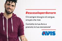 """Donazioni sangue, Santarcangelo fa proprio l'appello dell'Avis: """"C'è sempre bisogno di sangue, ora più che mai"""""""