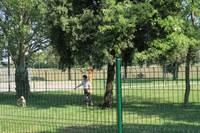 Ormai completata la nuova area di sgambamento per cani al parco Francolini