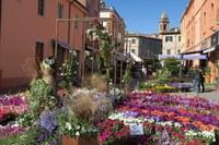 Piante, fiori, artigianato e prodotti per il benessere: oltre 120 espositori alla 31esima edizione di Balconi Fioriti