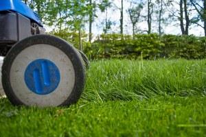 Rivisto il programma del taglio dell'erba nei parchi e nei giardini