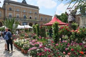 Sabato 15 e domenica 16 maggio il mercato di Balconi Fioriti
