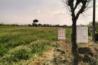 """Scuola elementare """"Giovanni XXIII"""", a breve lavori di manutenzione per 30mila euro"""