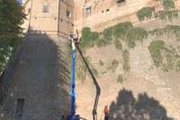 Sferisterio, al via la pulizia del muro dalle piante spontanee