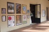Ufficio informazioni turistiche, riqualificato il portico delle Beccherie
