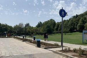 Verde pubblico, al via un nuovo ciclo di trattamenti agli alberi